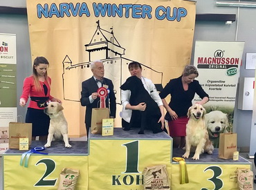 Narva Winter Cup 2017